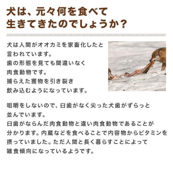 5Pセット 馬肉 5kg(1Kg×5Pセット) ※冷凍バラ凍結です ペット用馬肉  生馬肉 ※同梱包は合計10kgまでです。|meat-gen|13