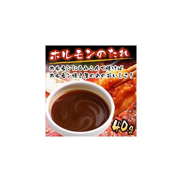 ホルモンのたれ 40g 焼肉 焼き肉 バーベキュー BBQ タレ