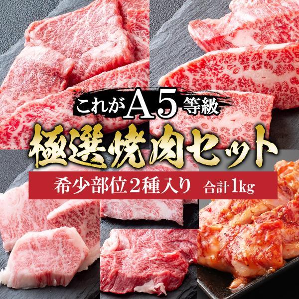 お中元 プレゼント 肉 牛肉 A5ランク 和牛 極上 焼肉 5種盛り 焼肉セット 1kg 国産 A5等級 高級 焼き肉 BBQ バーベキュー