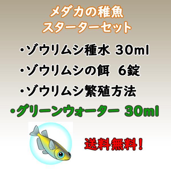 メダカの稚魚スターターセットゾウリムシとグリーンウォーターのセットです。