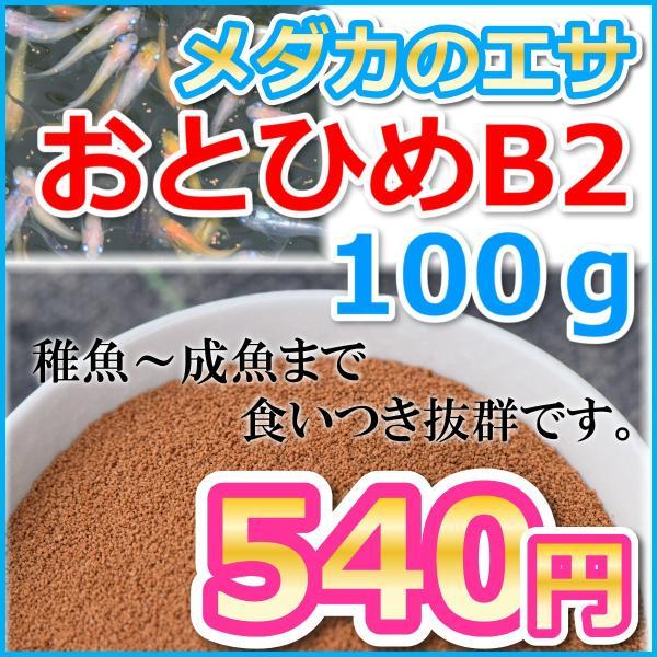 めだかのエサおとひめB2100グラム/メダカのエサ