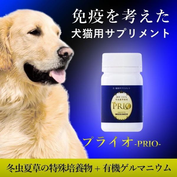 犬猫の冬虫夏草サプリメント プライオ45g 免疫力の健康維持 ペット用|medinex|02