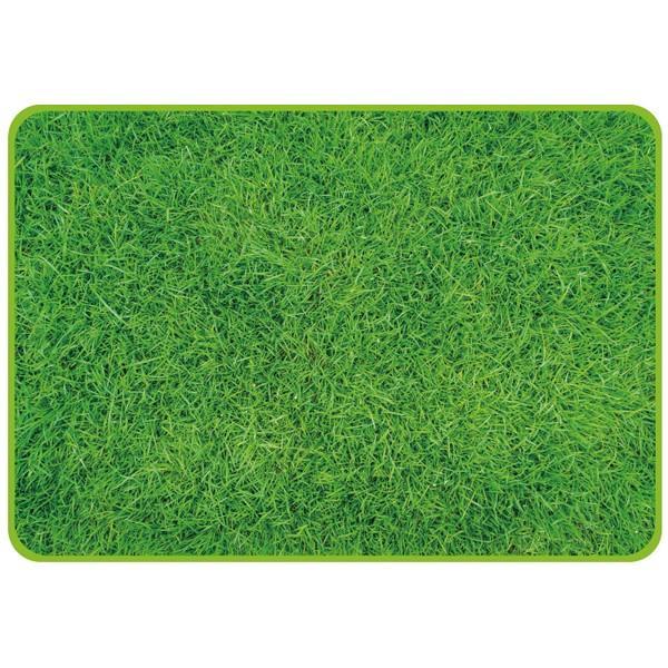 パール金属 ピクチャーレジャーシート70×100(芝生)