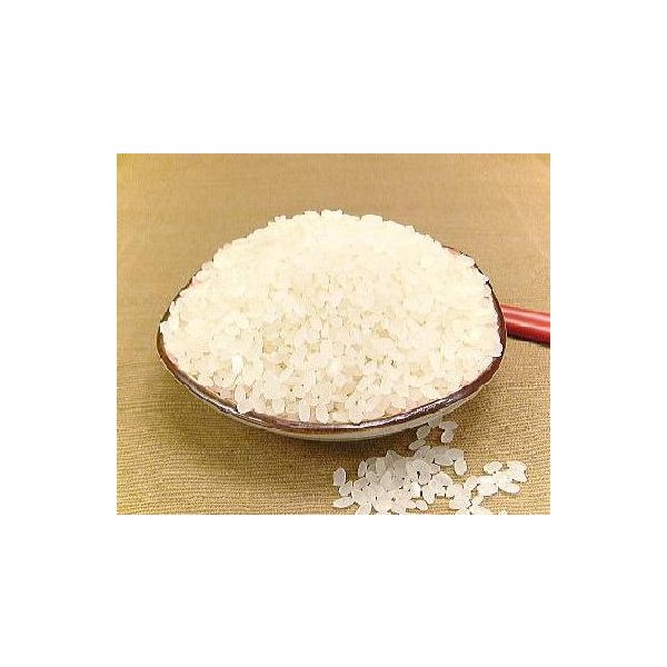 無洗米 5kg コシヒカリ 福井県産 無洗米 こしひかり 5キロ×1 お米 無洗米 コシヒカリ 5kg 福井産 コシヒカリ R2年産 新米