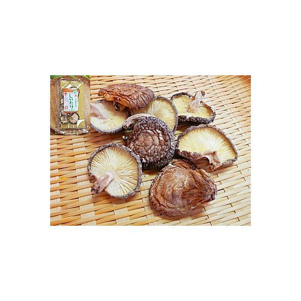 乾椎茸 20g×10入 干し椎茸 乾燥 しいたけ シイタケ 干ししいたけ ほししいたけ 乾燥 しいたけ 干し シイタケ 国産 国内産 日本産