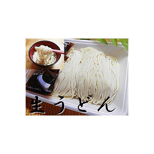 生うどん 2人前(2食×1パック入) 生うどん 冷凍 麺つゆ付 冷凍生うどん 生 うどん ウドン 饂飩 うどん つゆつき