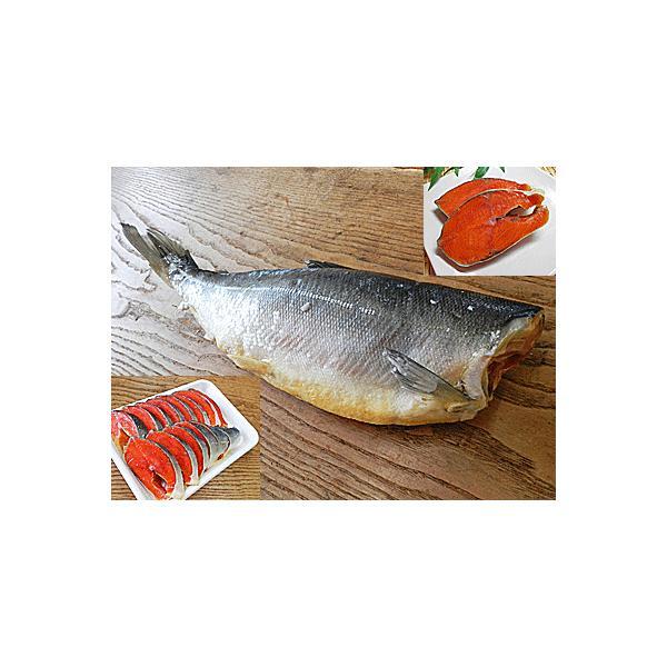 紅鮭 1尾入 北海道産 塩入 Mサイズ 塩 紅さけ 紅サケ 紅シャケ ベニサケ べにさけ べに鮭 国産 国内産 日本産 塩鮭 塩さけ 塩サケ 塩シャケ 塩紅鮭