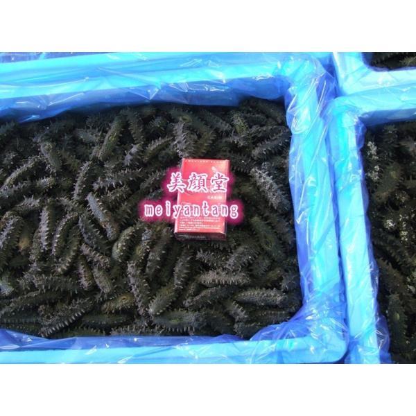 お一人様2点限り 激安セール 北海道産 乾燥なまこ ナマコ 500g 特A品S 海参 なまこ 売切御免|meiyantang|05