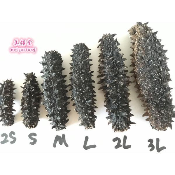 北海道 なまこ 海参 乾燥ナマコ 150g 特A品M|meiyantang|04