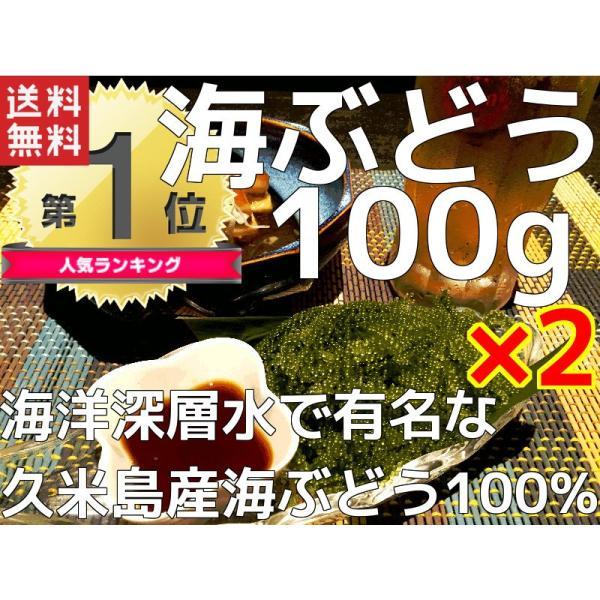 海ぶどう 沖縄 久米島産海ぶどう(100g)×2個セット 海洋深層水 で有名な久米島産海ぶどう100% お土産 おすすめ|mejapon