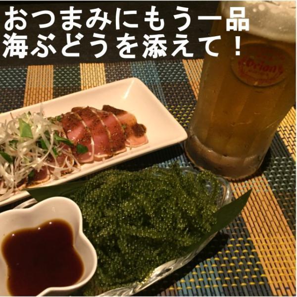 海ぶどう 沖縄 久米島産海ぶどう(100g)×2個セット 海洋深層水 で有名な久米島産海ぶどう100% お土産 おすすめ|mejapon|02
