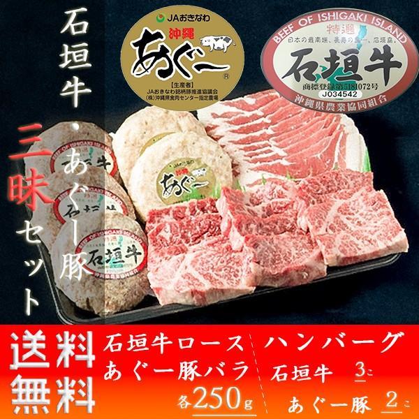 牛肉 ステーキ ギフト 石垣牛 あぐー豚 三昧セット お取り寄せ お土産 ja沖縄 いしがきビーフ本舗 送料無料 おすすめ