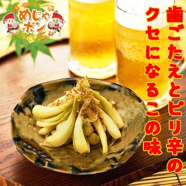 島らっきょう 漬物 おつまみ 沖縄県産品 おすすめ 送料無料 うちなー自慢島らっきょう塩漬け30g×10袋 デイゴフーズ