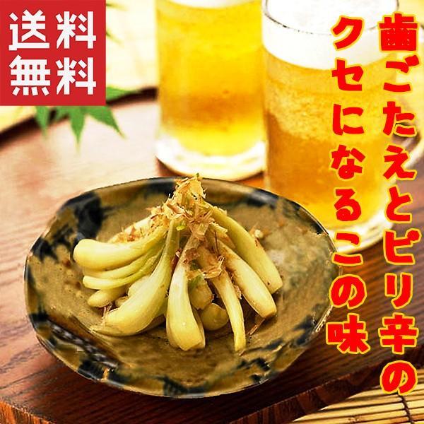 おつまみ 島らっきょう 塩漬け (30g)×20袋 沖縄県産品うちなー自慢 お土産  おすすめ