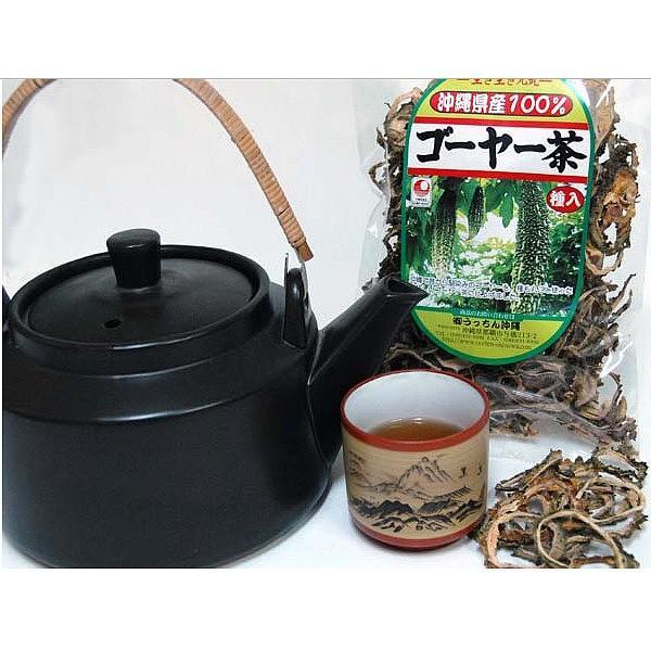ゴーヤ茶  送料無料 おすすめ 沖縄県産健康茶種入りゴーヤー茶スライス(70g) お土産 送料無料 おすすめ|mejapon|03