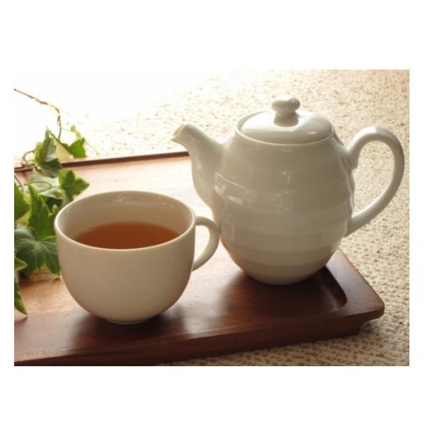 ゴーヤ茶  送料無料 おすすめ 沖縄県産健康茶種入りゴーヤー茶スライス(70g) お土産 送料無料 おすすめ|mejapon|04