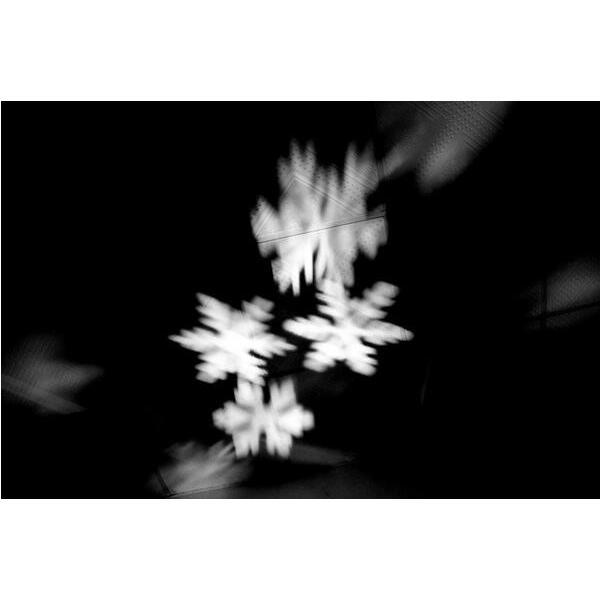 レーザーランプ クリスマス ハロウィン イルミネーション 芝生室外投影ライト 雪の花LEDランプ ステージランプ 照明 ロマンチック雰囲気 防水投影ランプ 2種類|melville|06