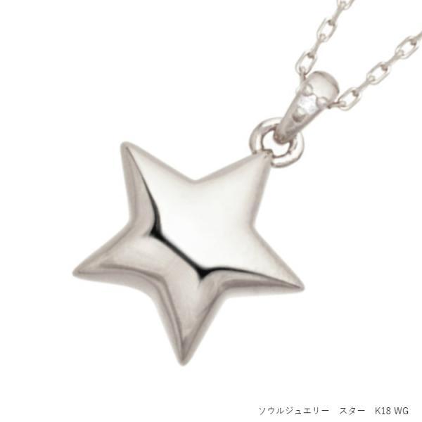ソウルジュエリー 遺骨ペンダント スター・K18WG ホワイトゴールド×ダイヤモンド  (誕生石での制作も可)50cmのロングチェーン