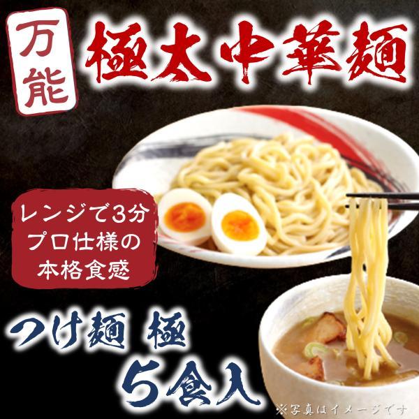 つけ麺 極 太麺 保存料 着色料 無添加 プロ品質 5食