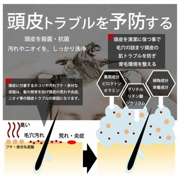 スカルプ シャンプー メンズ  大容量 1000ml DiNOMEN 薬用 スカルプ ケア リンスイン シャンプー ノンシリコン シャンプー  ギフト  公式|menscosme|05