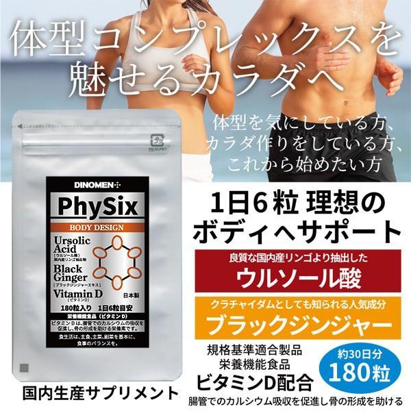 サプリメント DiNOMENボディデザイン PhySix 180粒 筋肉ケア 脂肪燃焼 骨成形促進 ブラックジンジャー クラチャイダム ウルソール酸 ビタミンD メール便|menscosme