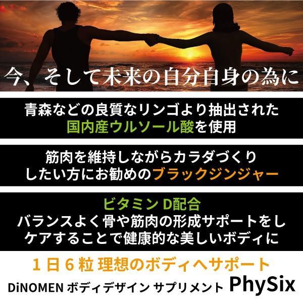 初回限定 サプリメント DiNOMENボディデザイン PhySix 180粒 筋肉ケア 脂肪燃焼 ブラックジンジャー クラチャイダム ウルソール酸 ビタミンD メール便 menscosme 09