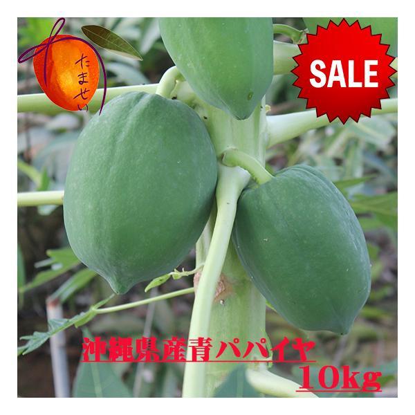 沖縄県産青パパイヤ約10kg  【夏季はチルド便でお届け致します。】 青パパイヤは栄養価が高く健康維持に大切な酵素を豊富に含んでいます。