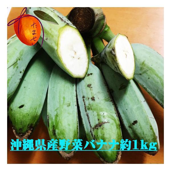 沖縄の野菜バナナ約 1kg 【お試し用】★バナナ天ぷらが美味しい★