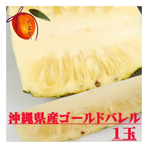 ゴールドバレル 1玉(約1kg〜)【発送5月下旬〜7月中旬】 芯まで極甘 【パイナップル】