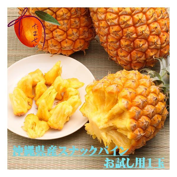 沖縄県産スナックパイン 小玉 お試し用 1玉 約500g【発送5〜9月】パイナップル