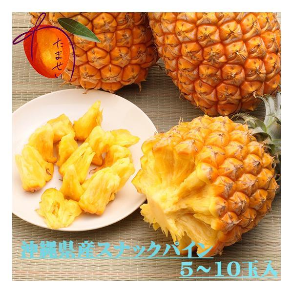 沖縄県産 ボゴールパイン(スナックパイン )5kg(5-10玉)【発送4月下旬〜9月中旬】パイナップル   一つづつ摘まんで食べる新種パイン  芯まで甘い