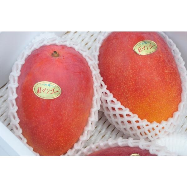 優品 沖縄県産完熟アップルマンゴー 約1kg  ☆送料無料☆