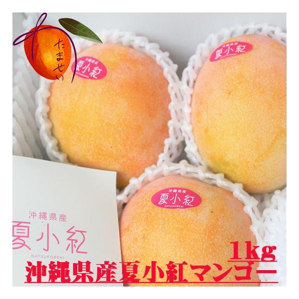 夏小紅マンゴー 約1kg(2〜4個)発送8月中旬〜9月初 新種稀少マンゴー