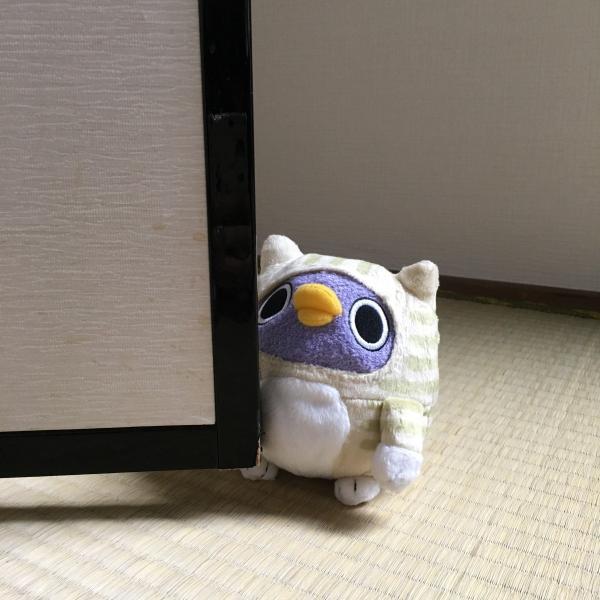 ネコめんトリ ぬいぐるみ|mentori|06