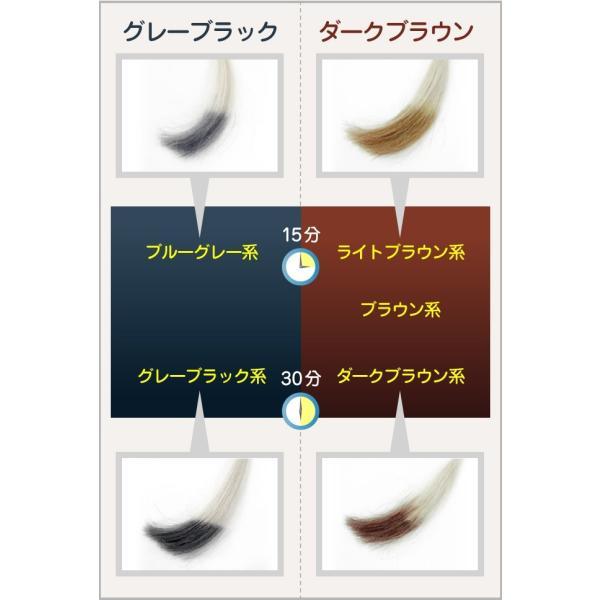 白髪染め ノンジアミンカラー メンズ 女性 兼用 トリートメントベースのヘアカラー 万葉染ネイチャーカラー  初回限定 お試し価格 ジアミンフリー|merica|12
