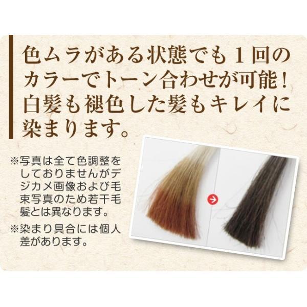 白髪染め ノンジアミンカラー メンズ 女性 兼用 トリートメントベースのヘアカラー 万葉染ネイチャーカラー  初回限定 お試し価格 ジアミンフリー|merica|13