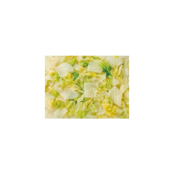 ニチレイ)そのまま使える白菜 500g クール [冷凍] 便にてお届け 【業務用食品館 冷凍】 ポイント消化