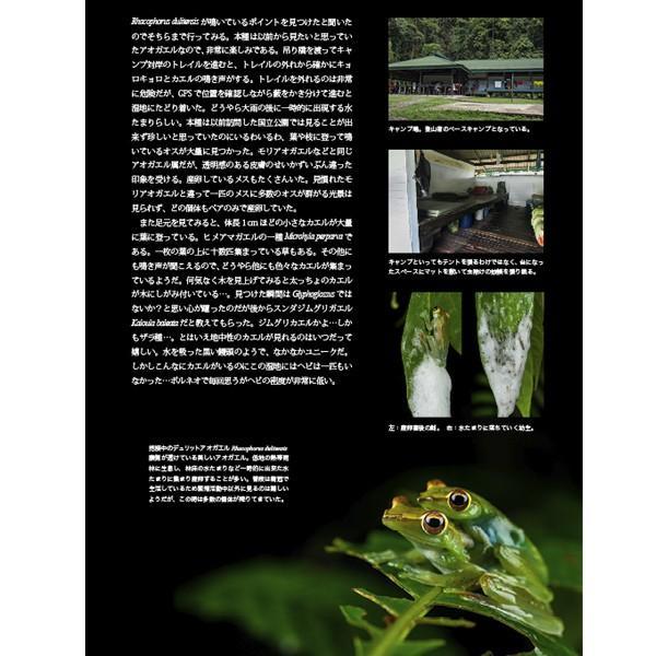 第2号 両生類・爬虫類専門雑誌『Caudata(カウダータ)』 【ネコポス便のみ】|metaledit|03