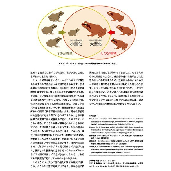 第2号 両生類・爬虫類専門雑誌『Caudata(カウダータ)』 【ネコポス便のみ】|metaledit|05