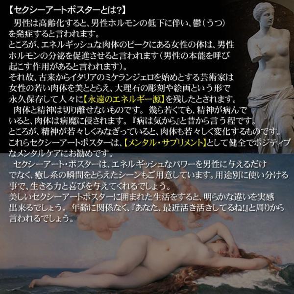 【セクシーアート】 ジャンボサイズ・ポスター040z|metrofashion|03
