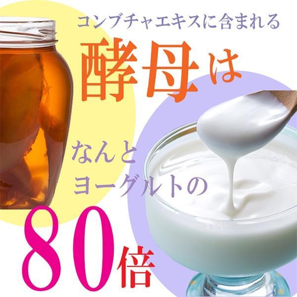 コンブチャクレンズ 紅茶キノコ 粉末 サプリ コンブチャ ドリンク 口コミ コンブチャプレミアム 120g|micelle|04