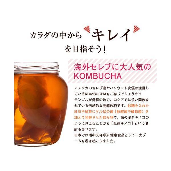 コンブチャ クレンズ サプリ 口コミ 市販 菌活 乳酸菌 紅茶キノコすっきりコン ブチャ粒 60粒 3個セット|micelle|05