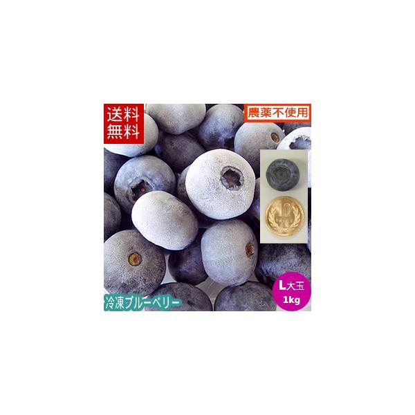 【送料無料】冷凍ブルーベリー1kg(Lサイズ)/岩手県遠野産、無農薬栽培