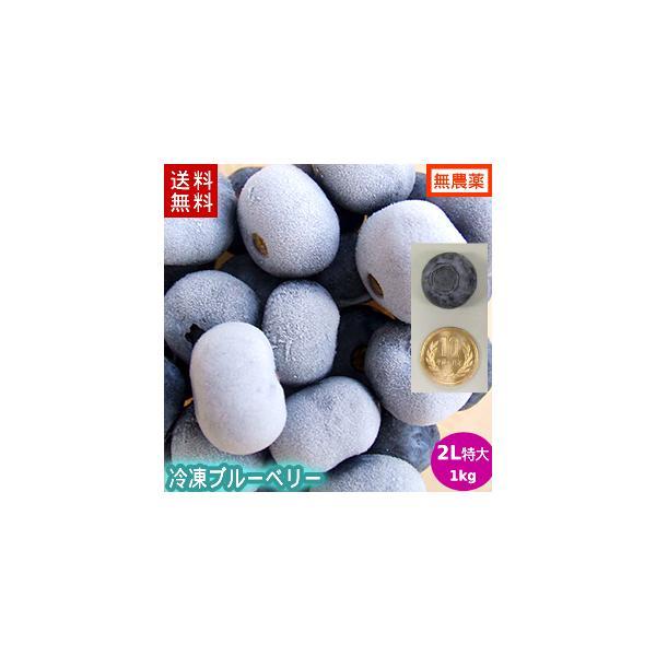 【送料無料】冷凍ブルーベリー1kg(2Lサイズ)/岩手県遠野産、無農薬栽培