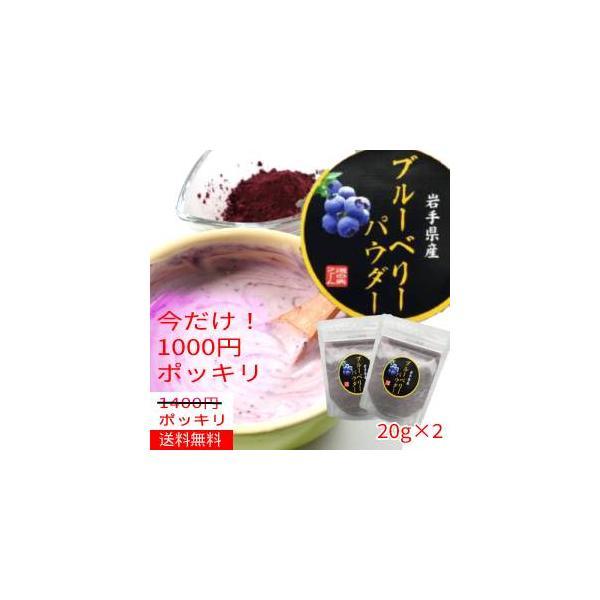 【送料無料】【1000円ポッキリ】ブルーベリーパウダー30g×2袋/岩手県遠野産をそのままパウダーに!