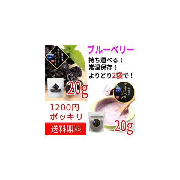 【送料無料】【2袋よりどり1000円ポッキリ】ブルーベリーセミドライ20g・ブルーベリーパウダー30g