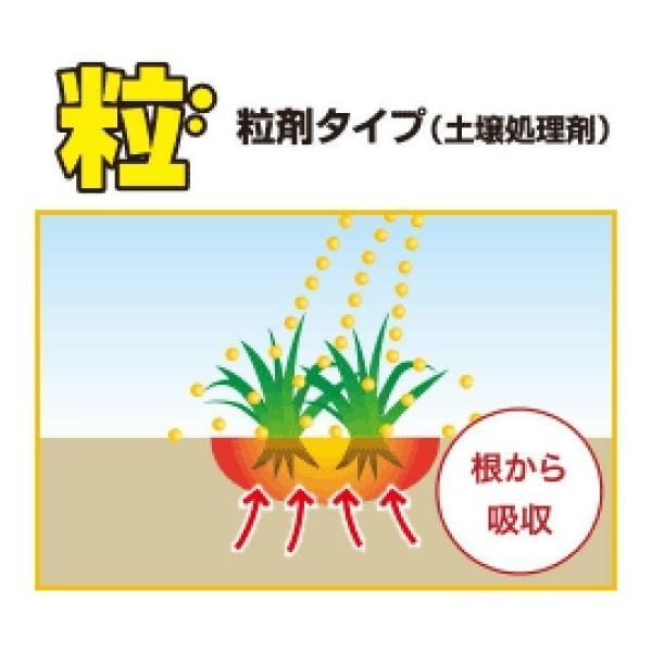 除草剤 強力 粒剤 顆粒 お得セット レインボー薬品ネコソギメガ 粒剤 21kg 4200m2まで 業務用にも 雑草を長期間抑える除草剤 約6ヶ月持続  送料無料|midoris|02