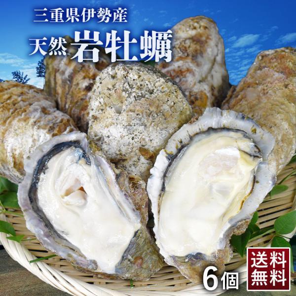 天然 岩牡蠣 6個 加熱用 三重県 伊勢産 400g以上 冷凍 殻付き牡蠣 岩カキ 軍手 ナイフ 特大サイズ バーベキュー