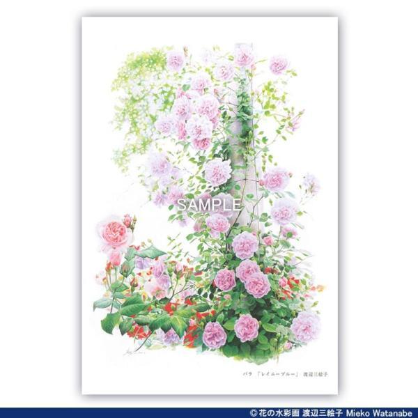 渡辺三絵子 花の水彩画 ポストカード12枚セット mieko-watanabe 11