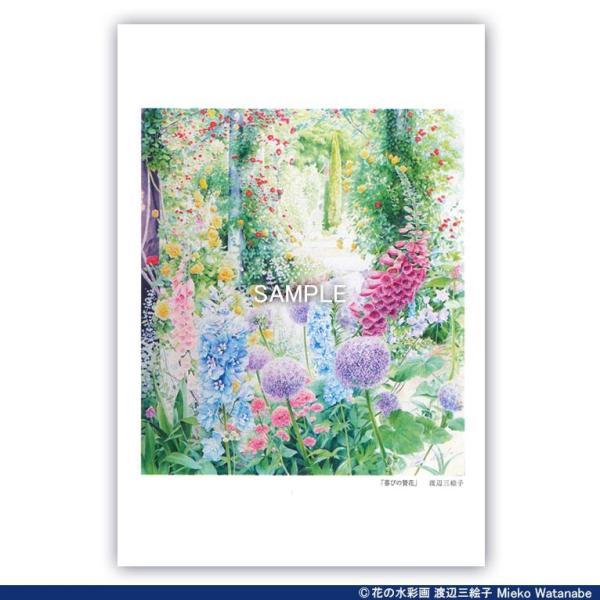 渡辺三絵子 花の水彩画 ポストカード12枚セット mieko-watanabe 10